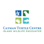 Cayman Turtle Centre, island wildlife encounter logo.