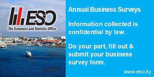Trythis_ESO_BusinessSurvey_ChamberBanner_600x300_Slide2 (Final)
